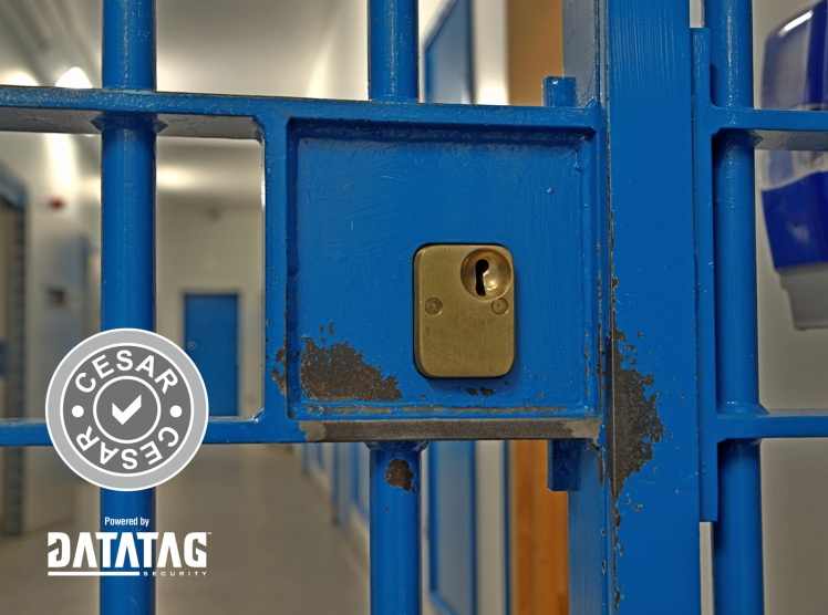 Jail_Door